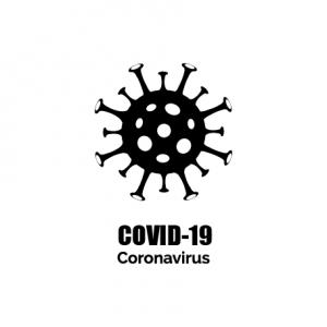 Image of Coronavirus organism